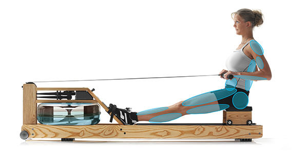 Rudergerät Test Waterrower Muskeln Training
