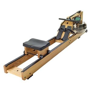 WaterRower Eiche Hinten