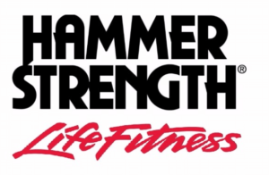 Life Fitness Rudergerät